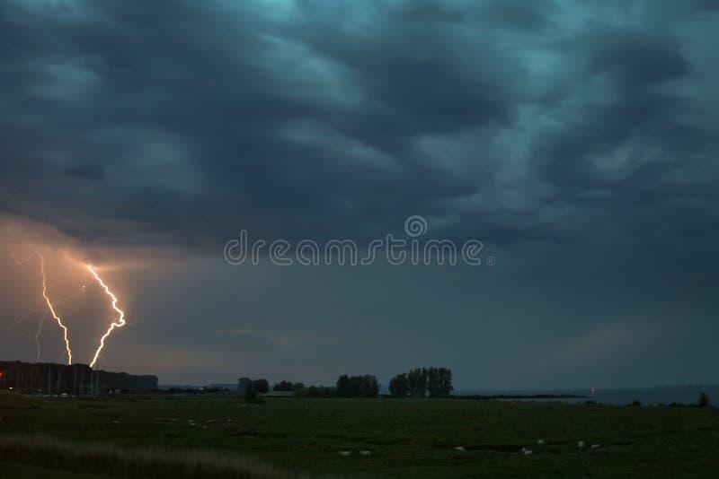 Dos rayos uno al lado del otro pegan realista cerca de un estuario en la parte al sudoeste de los Países Bajos foto de archivo