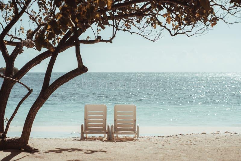 Dos sillas de cubierta en la playa soleada cubierta por el árbol foto de archivo libre de regalías