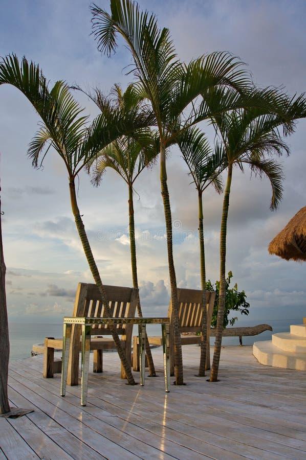 Dos sillas dos palmeras imagenes de archivo
