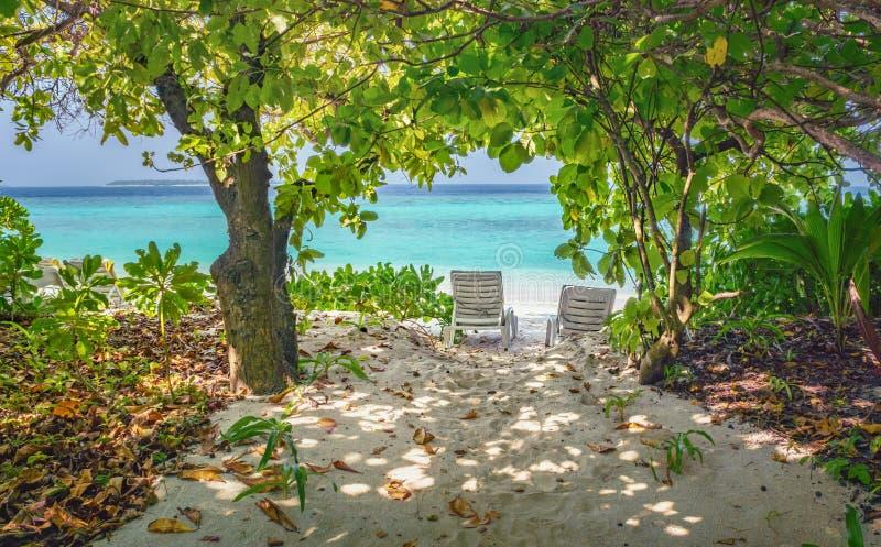 Dos sillones vacíos en la sombra de árboles en una playa en Maldivas recurren fotos de archivo libres de regalías