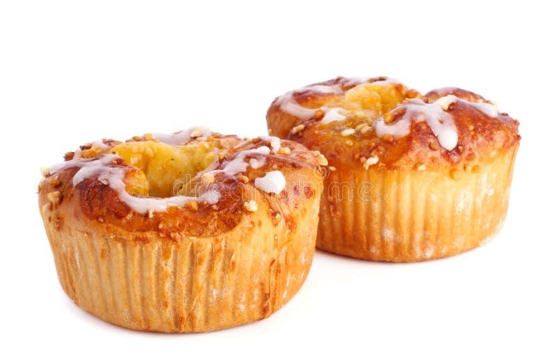 Dos tartas de manzanas foto de archivo libre de regalías