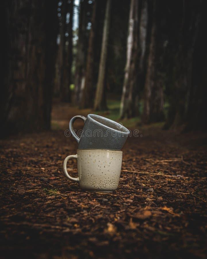 Dos tazas de café en el bosque fotografía de archivo
