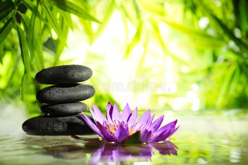 Dos termas vida ainda com a pedra dos lótus e do zen na água imagem de stock royalty free