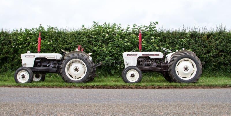 Dos tractores blancos marrones de David del vintage parqueados para arriba fotografía de archivo libre de regalías