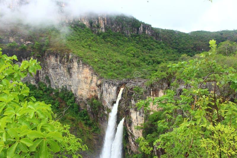 Dos Veadeiros de Chapada da cachoeira foto de stock royalty free