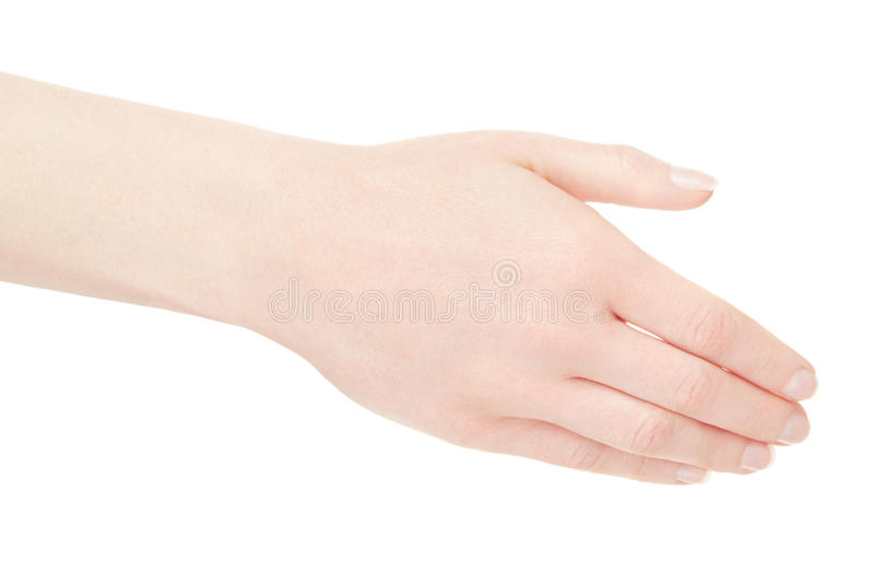 Dos vide de main de femme sur le blanc photo stock