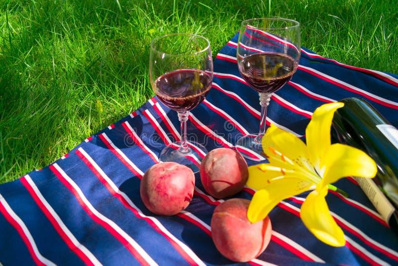 Dos vidrios de vino tinto, en un fondo de la hierba El concepto de una comida campestre romántica en naturaleza imágenes de archivo libres de regalías