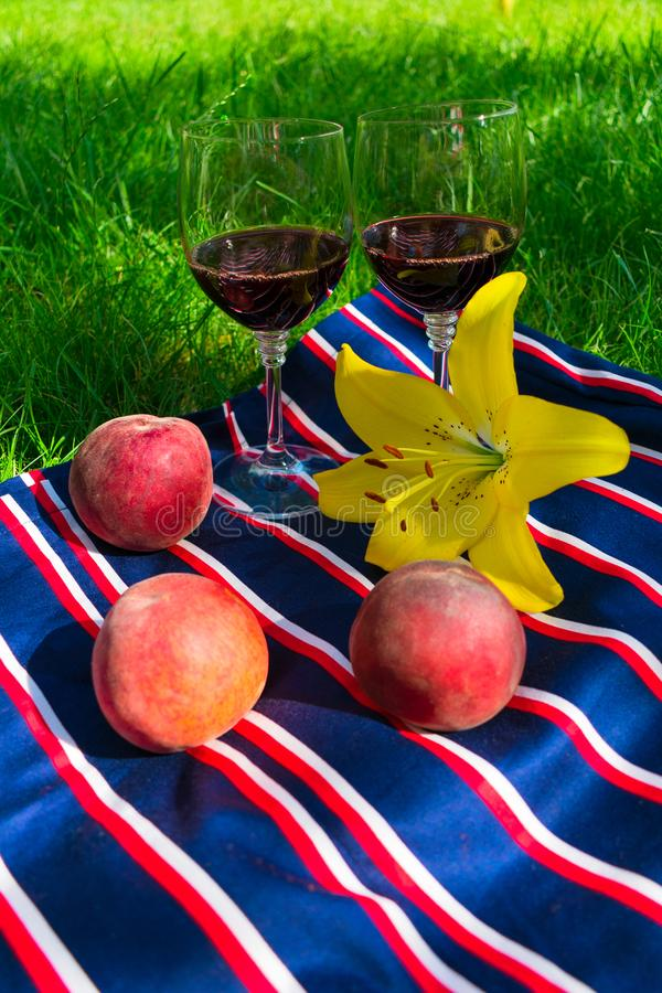 Dos vidrios de vino tinto, en un fondo de la hierba El concepto de una comida campestre romántica en naturaleza fotografía de archivo libre de regalías