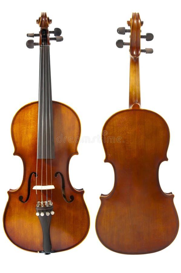 Dos violines foto de archivo