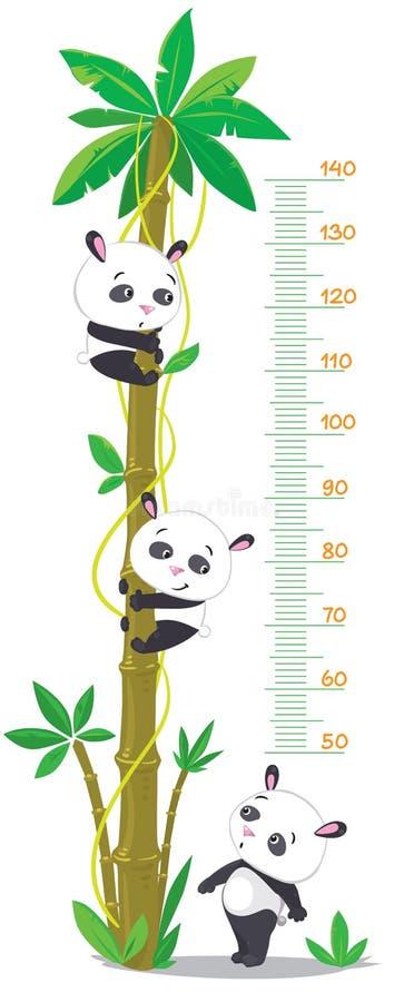 Dosez le mur avec le palmier et trois pandas drôles illustration libre de droits