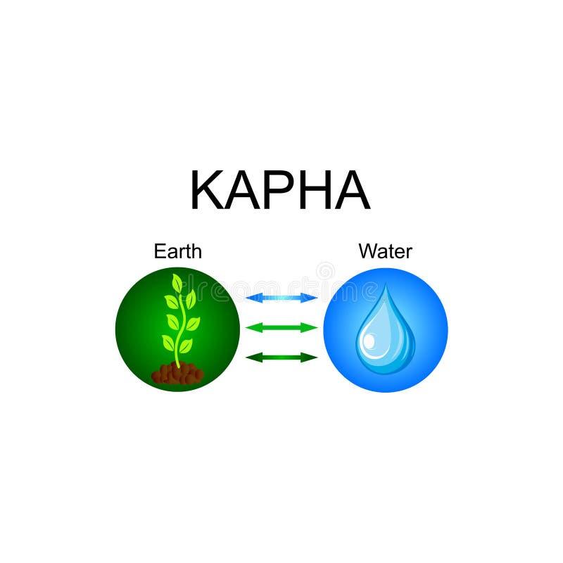 Dosha Kapha - ayurvedic σύνταγμα ανθρώπινων σωμάτων Συνδυασμός στοιχείων γης και νερού ελεύθερη απεικόνιση δικαιώματος