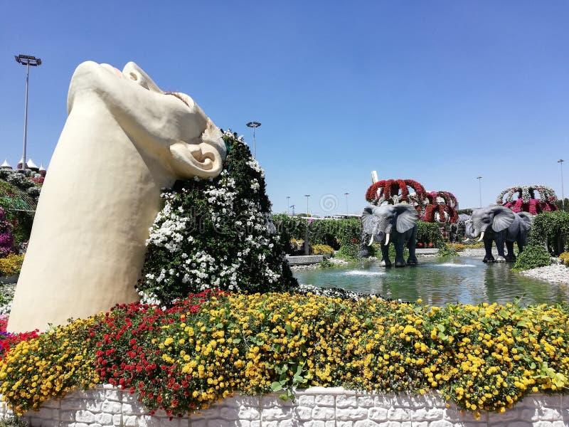 Doskonalić dzień w Dubaj cudu ogródzie fotografia royalty free