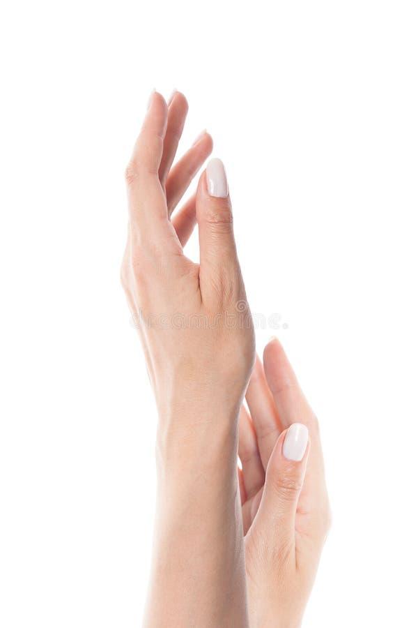Doskonalić kobiet ręki odizolowywać na białym tle Gwoździe z naturalnym kolorem nailpolish, manicure zdjęcie stock