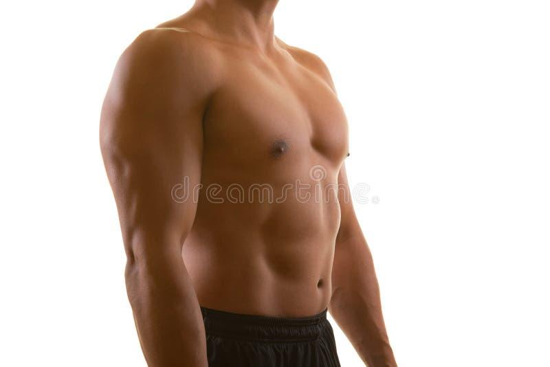 Doskonalić męska mięśniowa półpostać odizolowywająca na białym tle Sprawność fizyczna, trening, dieta i stażowy pojęcie, obrazy stock
