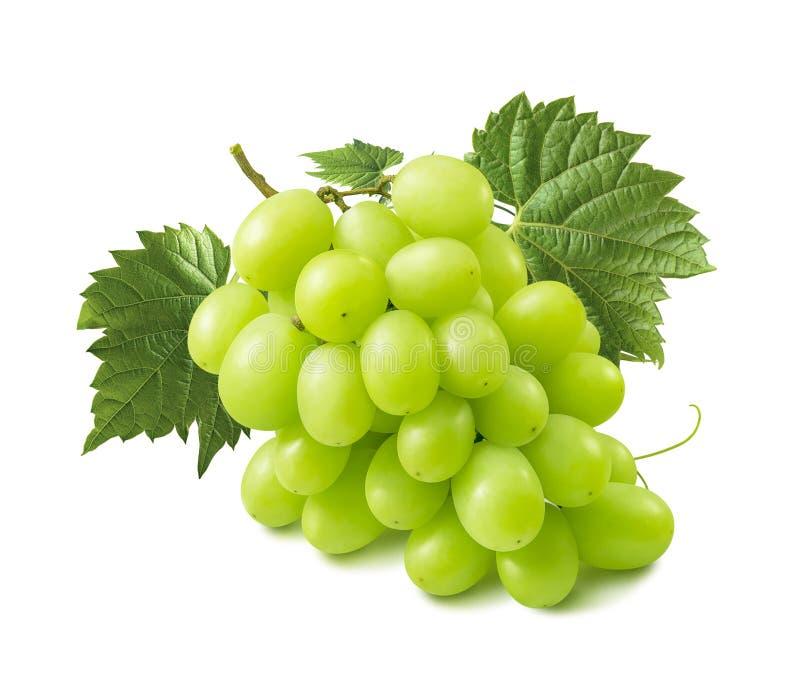 Doskonalić wiązka zieleni winogrona odizolowywający na białym backgroun zdjęcie royalty free
