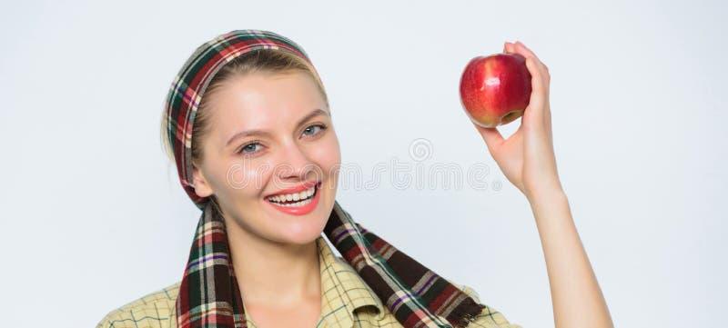 Doskonali? jab?ka Zaczyna jab?czan? diet? Kobieta niesie kosz z naturalnymi owoc ?redniorolna ogrodniczek jab?ek ?niwa dziewczyny zdjęcie royalty free