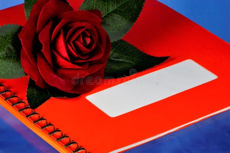 Dossier rouge de rose et d'album sur le fond bleu, d?coration d'?v?nement de f?te photo stock