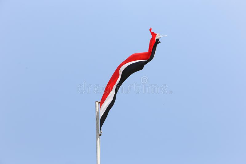 dostępne flagi Egiptu okulary stylu wektora fotografia royalty free