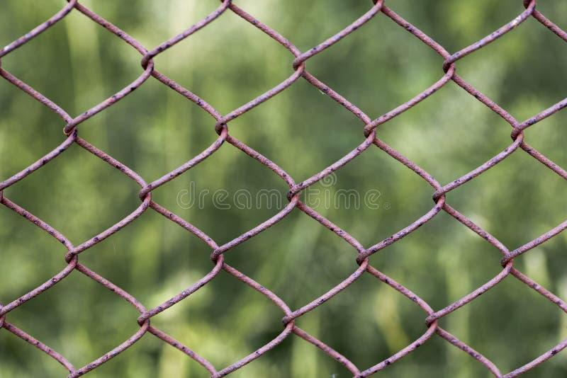 dostępnego tła ogrodzenia bezszwowy wektorowy biel drut obraz royalty free