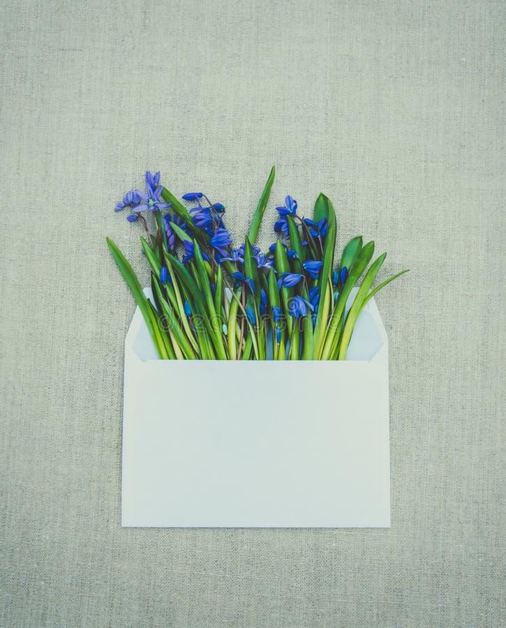 dostępny karciany Easter eps kartoteki powitanie Cebulicy błękitna i biała opancerzanie koperta obraz royalty free