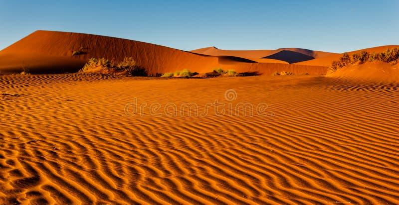 Dosyć pluskoczący wzór wystrzelony piasek na Namibijskiej pustynnej podłoga zdjęcie royalty free