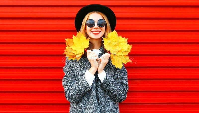 Dosyć szczęśliwa dziewczyna trzyma żółtych liście klonowych obrazy stock