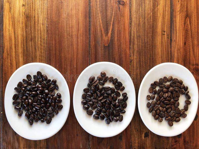 Dotyka różnicę Różny kawowych fasoli pieczenie Pieczone kawowe fasole obraz royalty free