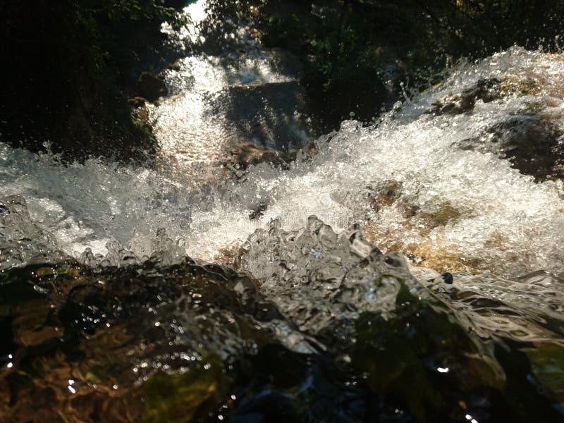 Dotyka wod? obrazy royalty free