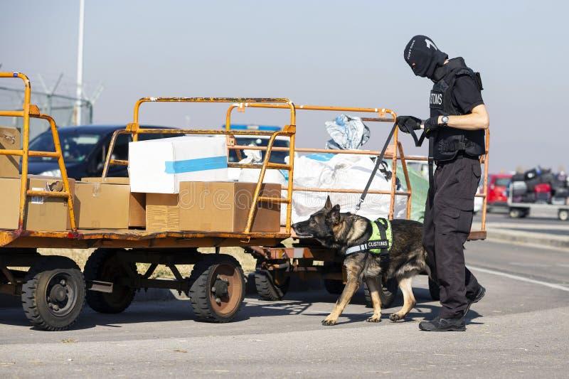 Douane en grensbeschermingambtenaar en hond royalty-vrije stock foto