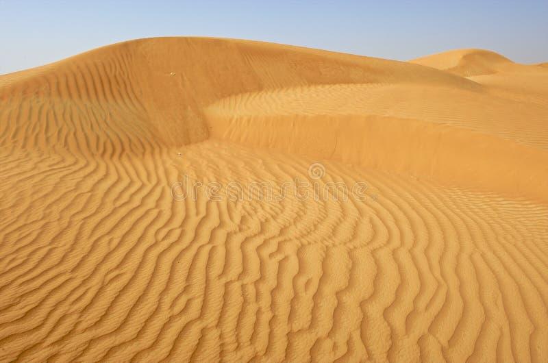 Doubai, sanddune in de woestijn stock afbeeldingen