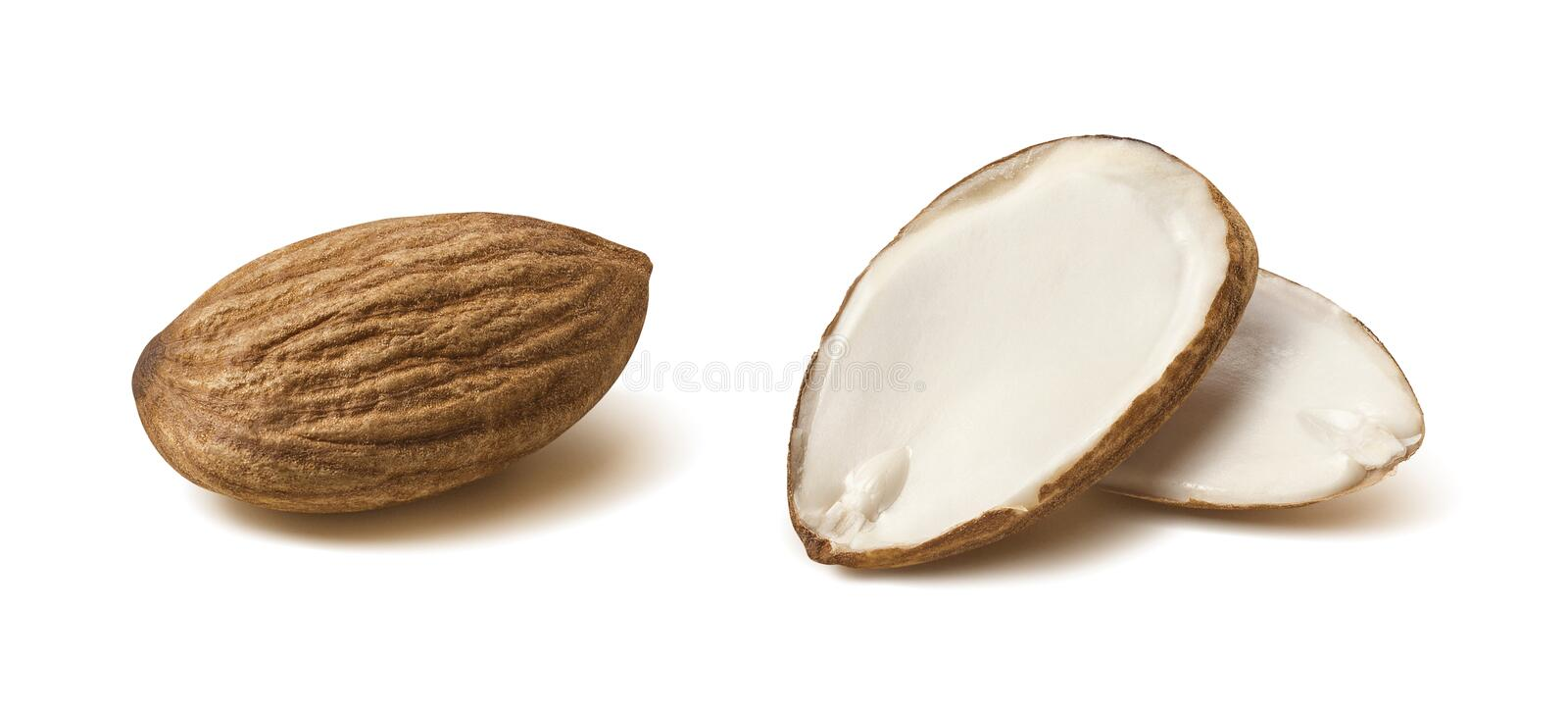 Double almond nut half isolated on white background. Double almond nut half slice isolated on white background as package design element stock photo