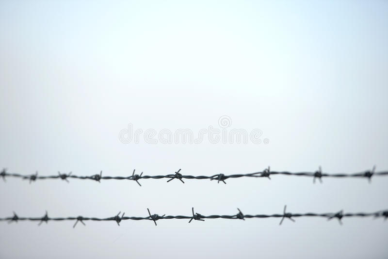 Double barbwires stock photo. Image of line, protection - 70405796