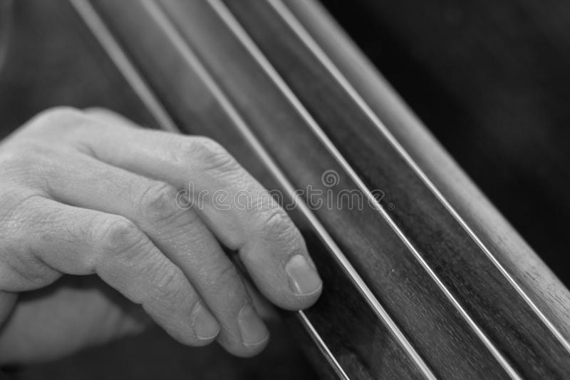Double Bass. A musician's hand playing the double bass, in black & white royalty free stock photography