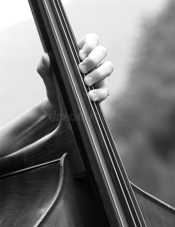 Double bass player royalty free stock photos