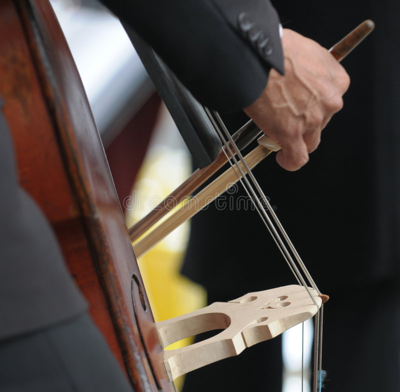 Download Double Bass Player's Hand Detail Stock Image - Image: 5401497