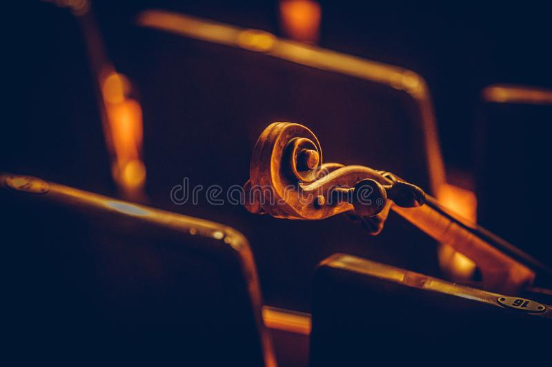 Double bass scroll and tuning pegs. Close up shot of a double bass scroll and tuning pegs stock image