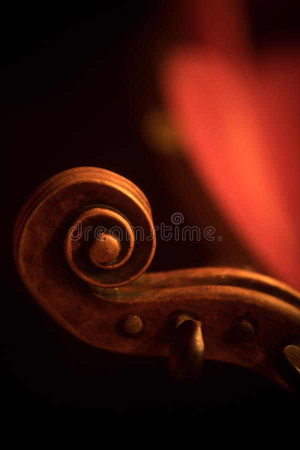 Double bass scroll and tuning pegs. Close up shot of a double bass scroll and tuning pegs royalty free stock photos