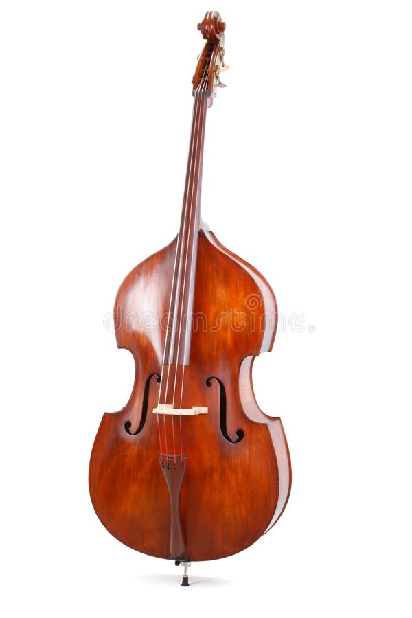 Double bass on white background. Front view of a double bass on white background royalty free stock photos