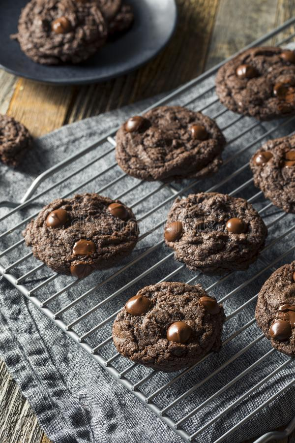 Double chocolat foncé fait maison Chip Cookies photo libre de droits