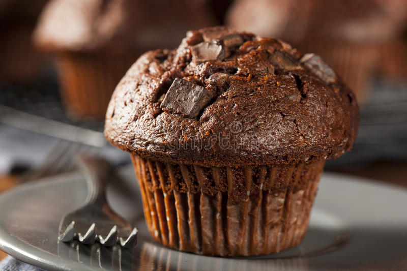 Double Chocolate Chip Muffin stock photography
