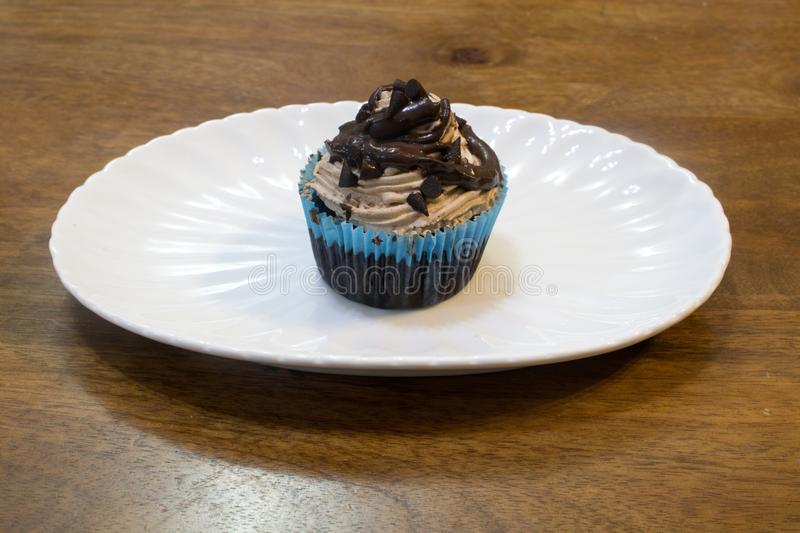 Double chocolate choco chip cup cake stock photography