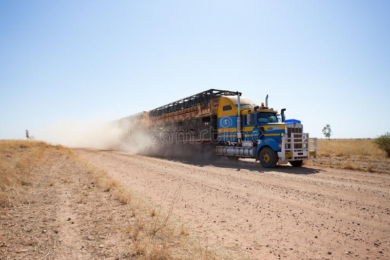 Double deck cattle road train approaching on dusty outback road. Powerful trucks with three double deck trailers with beef cattle thunder along the dusty outback stock images