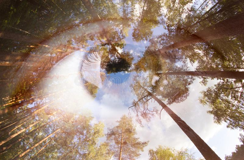 Double exposition d'un oeil illustration de vecteur