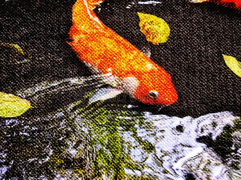 Double exposure of colorful fancy carp fish,. Double exposure of colorful fancy carp fish, koi fish is swimming in pond, close up. Perfect for background royalty free stock photography