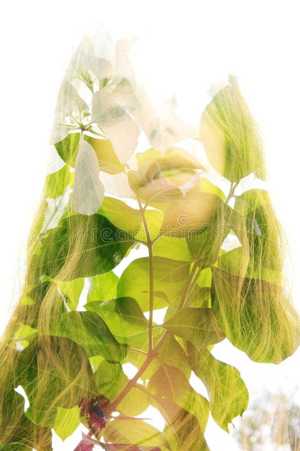 Double exposure portrait of a young natural beauty combined with tree branches and leaves royalty free stock photo