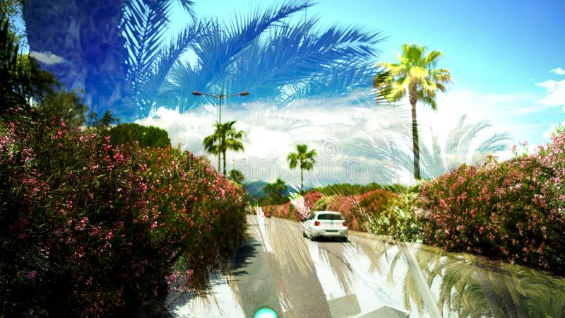 Double exposure of palms and car driving on road, memories from summer trip stock photos