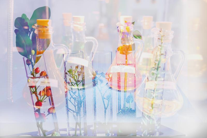 Double exposure Small plants in test tube for biotechnology medi stock photography