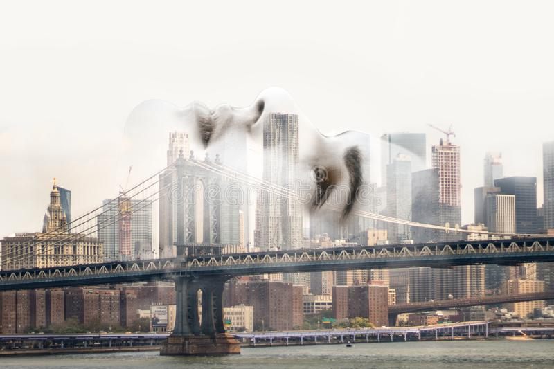 Double exposure of vector female face with Manhattan Bridge skyline. Double exposure of vector face with Manhattan Bridge skyline using neutral tones and solid royalty free stock image