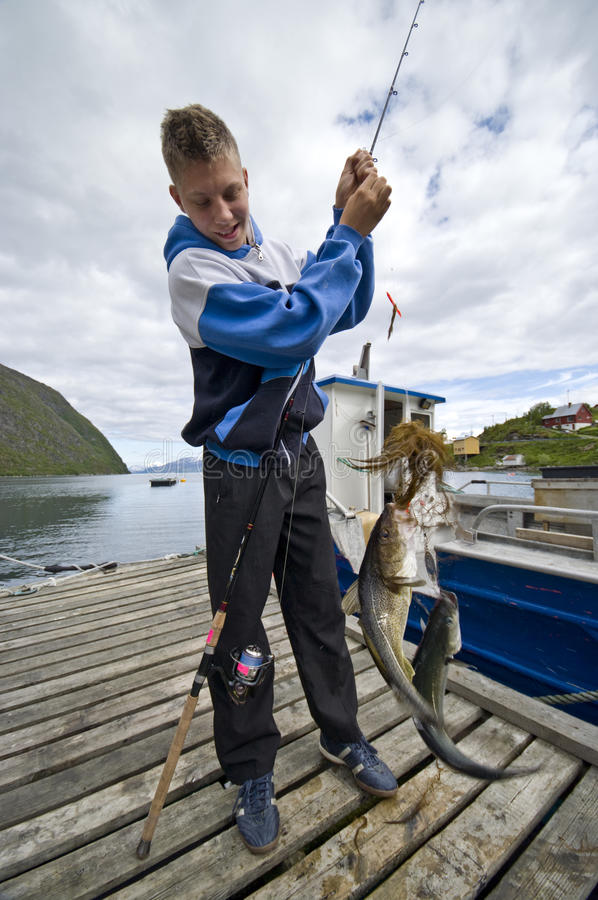 Double fish trophy. A happy teenage fisherman having caught a double trophy - cod and coalfish. Norway fjord royalty free stock photography