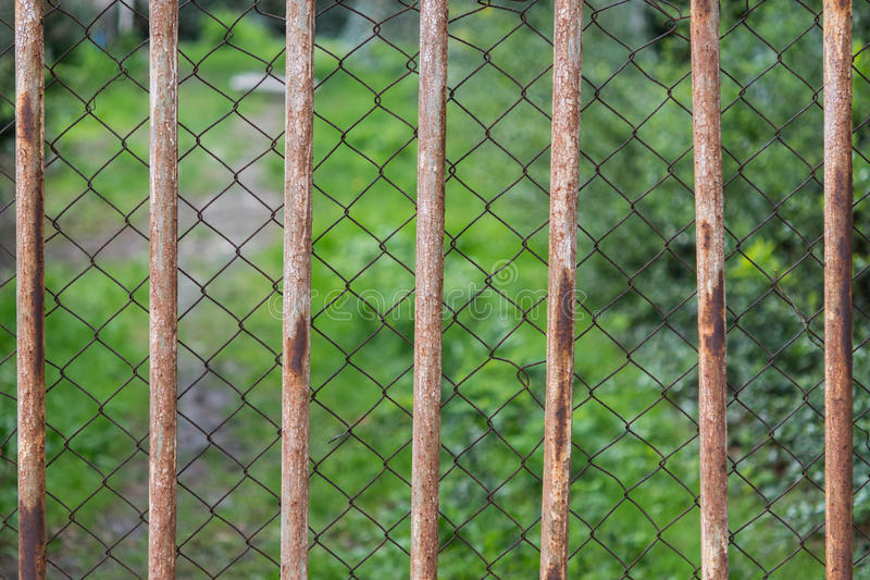 Green vegetation behind a double metal fence royalty free stock photo